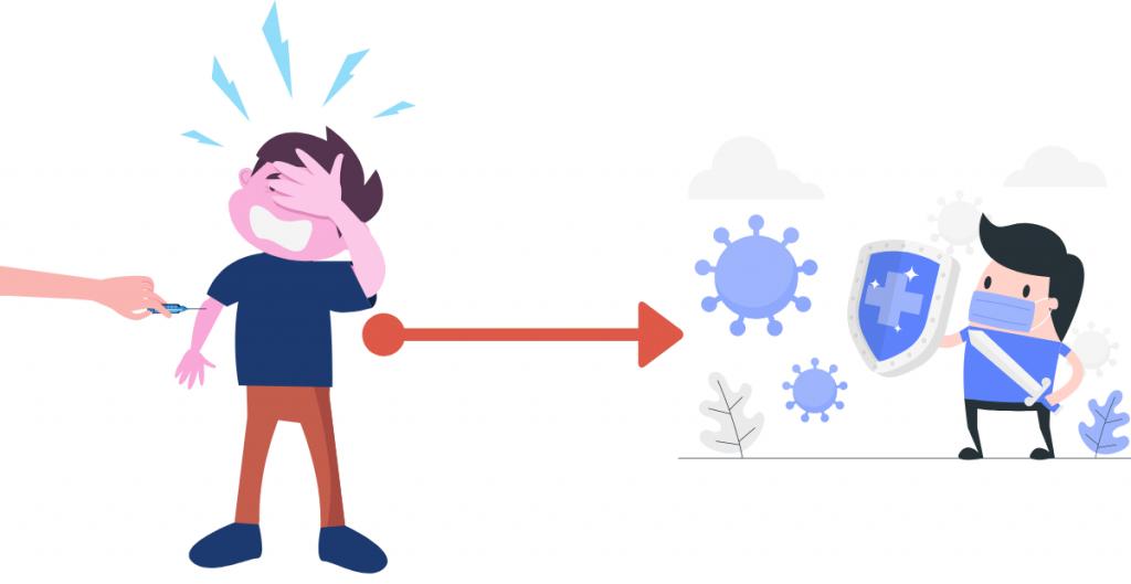 Vaccination and Immune Response
